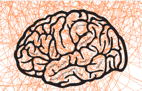 hjärna kopiera